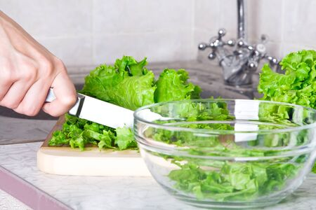 Lettuce with knife and glass bowl  Stock Photo