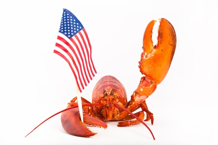 Cooked lobster is holding american flag and saying hello Stock Photo