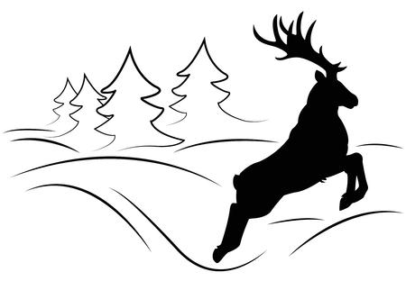 roe deer: deer