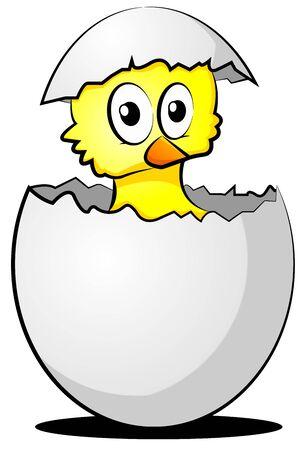 hatchling: slipping chicklet