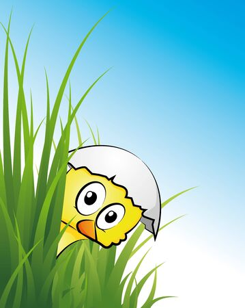 chicklet in the grass