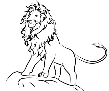 lioness: lion Illustration