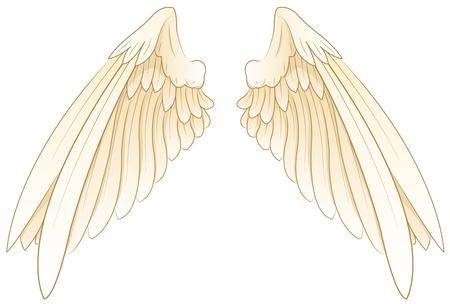 angels in heaven: wings