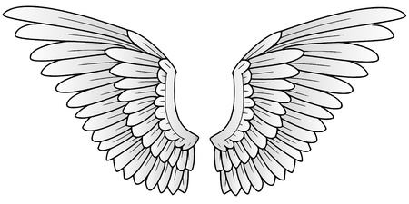 eagle wing: wings