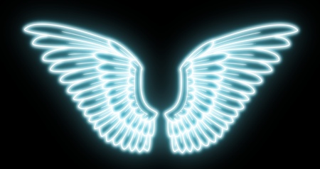 angels wings: wings