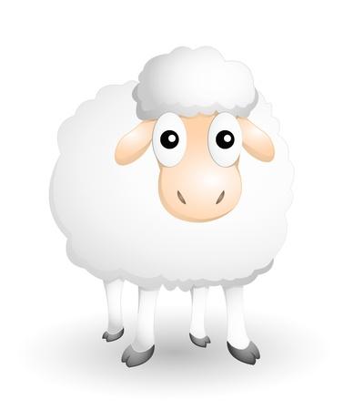 flock of sheep: sheep