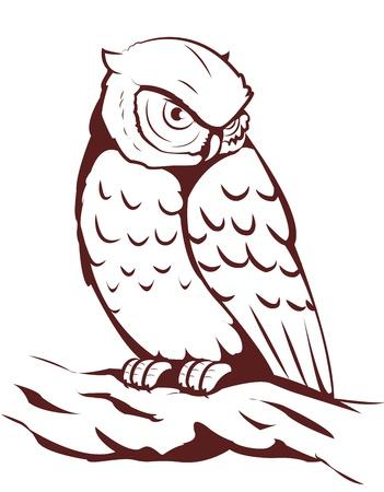 owl Imagens - 12220743