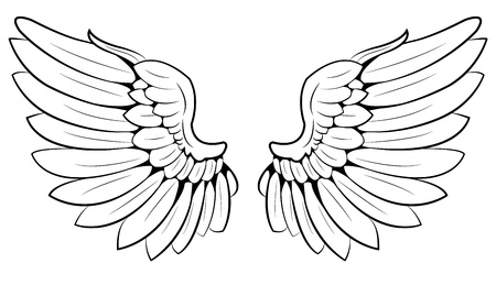pair of wings Vector