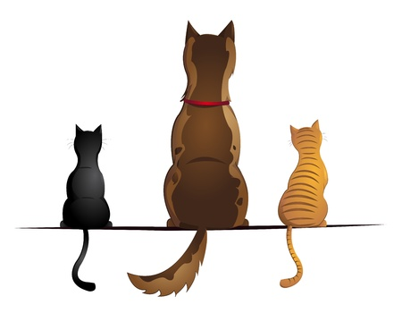 cats and dog Illustration