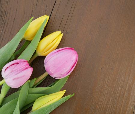 tulips Imagens