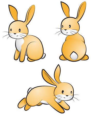 gnawer: rabbit-set