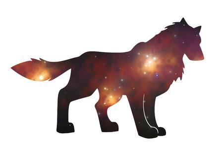 starwolf Imagens