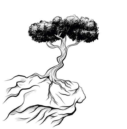 tree on a ledge Çizim