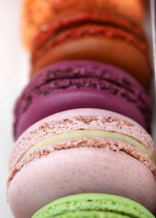 Colourful macaron background.