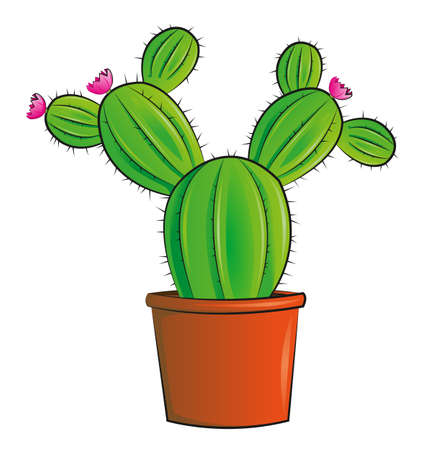 cactus illustration background.