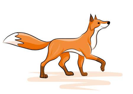 cute fox Çizim