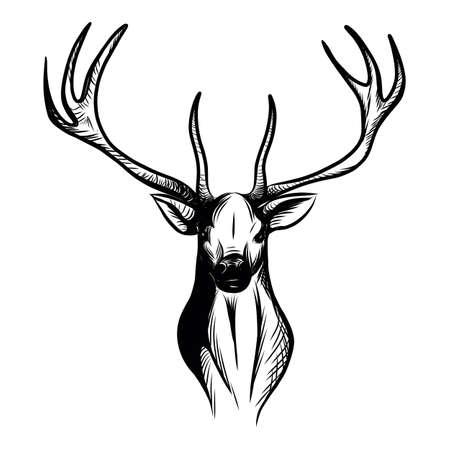 stag head Vektoros illusztráció
