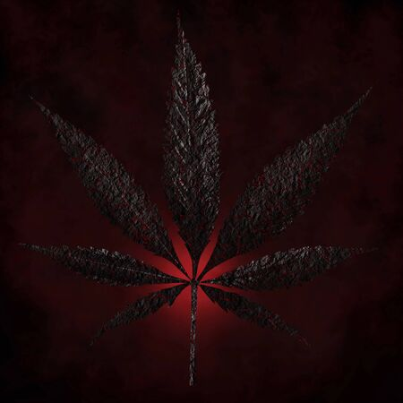 burnt charred cannabis leaves isolated on dark red background Growing medical marijuana cbd