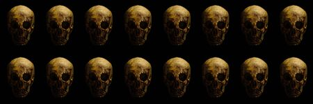 real skull is isolated on black background pattern with texturied bones