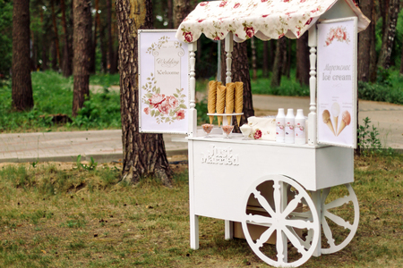 Wedding cart with ice cream in a beautiful pine forest