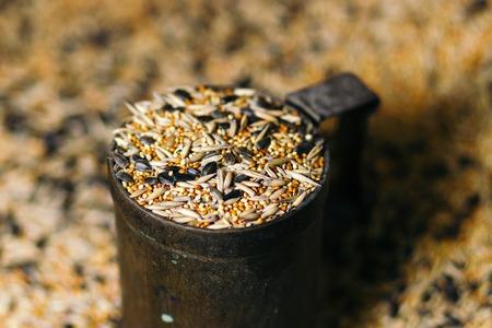 Birdseed grain poured in a vintage mug. close-up.