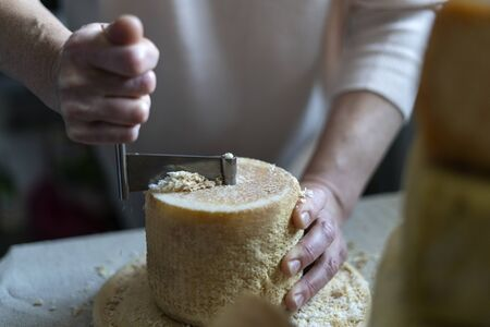 Scraping Device of Swiss Cheese Tete de moine. A man cuts cheese.