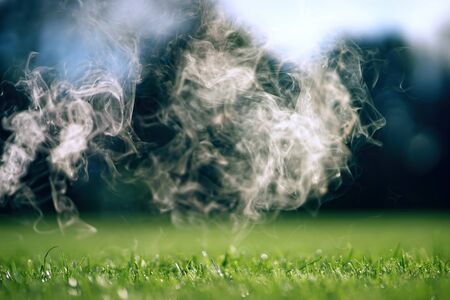 The smoke over the green grass lawn on a Sunny summer day.