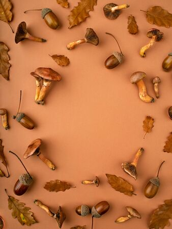 Autumn background with various botanical stuff such as mushrooms, oak dry leaves, acorns. Composition in warm tones. Thanksgiving holidays and autumn concept. Flat lay, copy space for a text.