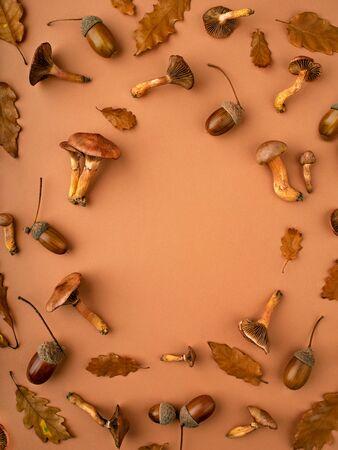 Fondo de otoño con diversas materias botánicas como setas, hojas secas de roble, bellotas. Composición en tonos cálidos. Vacaciones de acción de gracias y concepto de otoño. Endecha plana, copie el espacio para un texto.