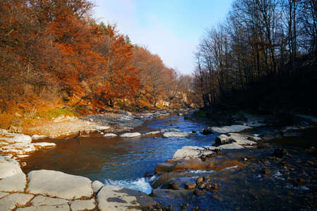 Landscape of a Carpatian mountains river in the autumn forest photo
