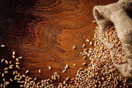 wheat grain: wheat grain on wooden table