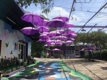 umbrella Banco de Imagens