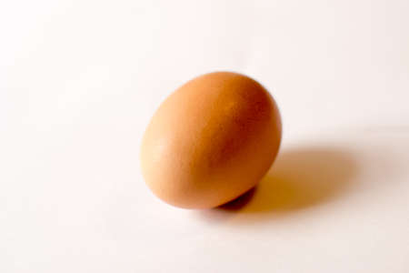 greenness: Egg Stock Photo