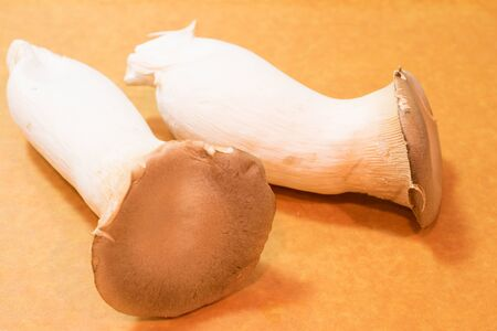 virginity: Mushroom Stock Photo