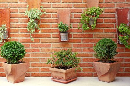 vertical garden: Vertical Garden - Ceramic and Zinc Plant Pots on a Red Brick Wall Stock Photo
