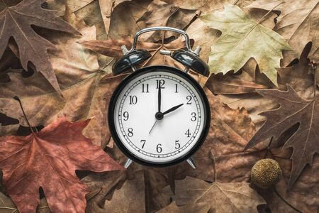 Classic Alarm Clock on Autumn Leaves - Fall Back - Daylight Saving Time Stock Photo