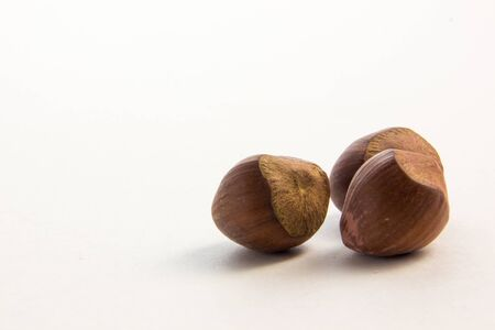 hazel nuts on a white background Stock Photo