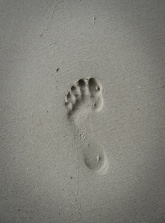 footprints in the beach photo