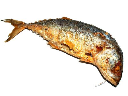 a  photo of  fish food    tuna  for  eat     photo