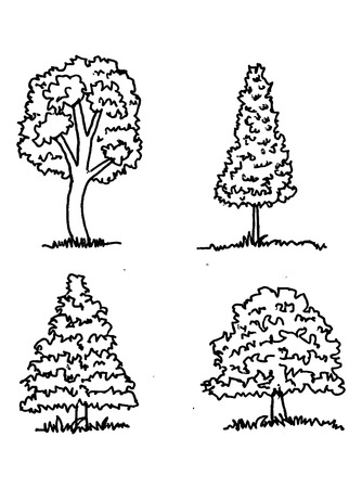 knotty:  Vector trees with leaves