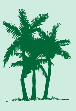 bole: palm tree Tropical palm trees, black silhouettes Illustration