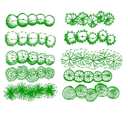 bovenaanzicht plant: Bomen bovenaanzicht voor architectuur landschapsontwerp projecten