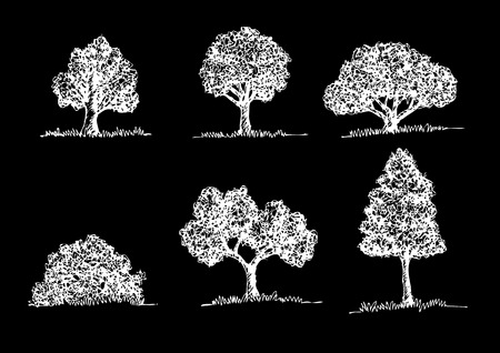 Set of Vector trees with leaves  Illustration