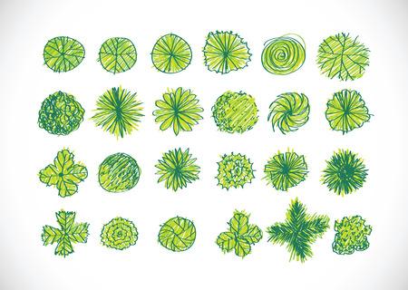 leaf tree: Alberi di vista superiore di architettura per progetti di design del paesaggio