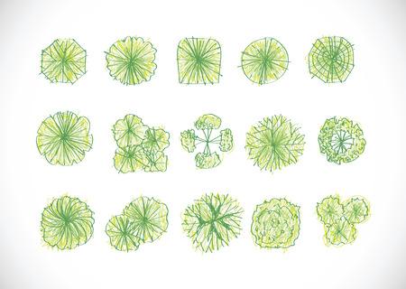 Árboles vista superior de arquitectura de paisaje proyectos de diseño