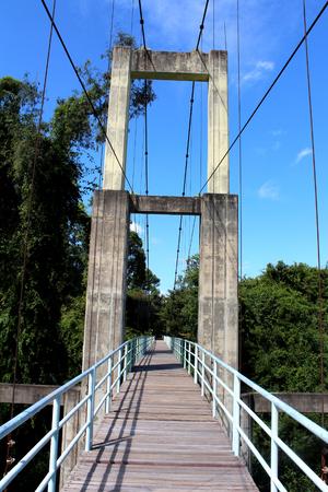 suspension bridge over river in rainforest photo
