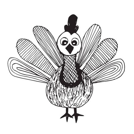 turkey bird: Turkey bird cartoon for Happy Thanksgiving celebration