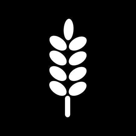 ear of wheat: Ear Wheat Icon Illustration design