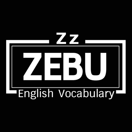 vocabulary: ZEBU english word vocabulary illustration design