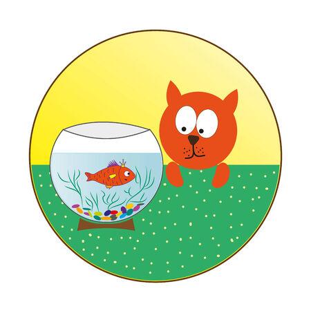 aquarian fish: the cat watches a small fish in an aquarium
